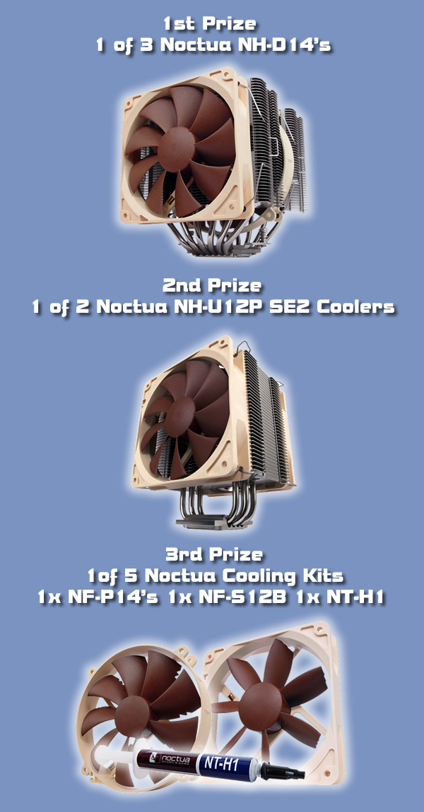 Noctua Cooling Competition