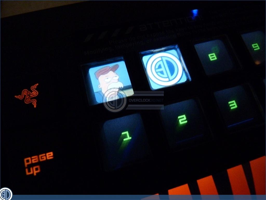 razer deathstalker ultimate review lighting and screen