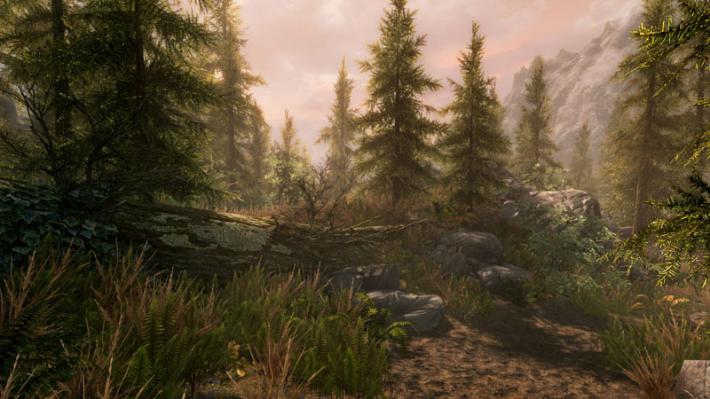 Skyrim Special Edition is coming to PC and will be 64-bit