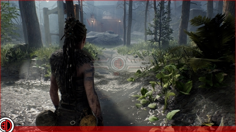 Hellblade: Senua's Sacrifice Graphical options and settings